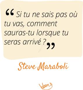 si tu ne sais pas où tu vas, comment sauras-tu lorsque tu seras arrivé? Steve Maraboli